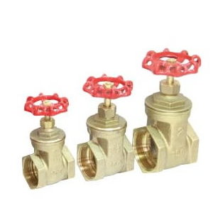 IPS Gate Valve # 34-005- Are Sheng Plumbing Industry