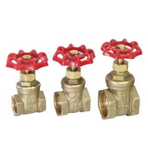 IPS Gate Valve # 34-006- Are Sheng Plumbing Industry