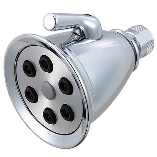 Good shower head # D86-004- Are Sheng Plumbing Industry
